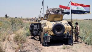 Irakiska armén försöker erövra Falluja av IS.