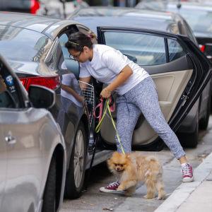 En kvinna i centrala Miami flyr undan orkanen Irma tillsammans med sina sällskapsdjur.