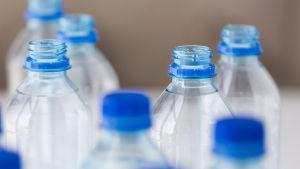 Vattenflaskor i plast med blå skruvkork.