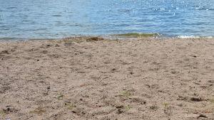 En sandstrand, vatten, sol.