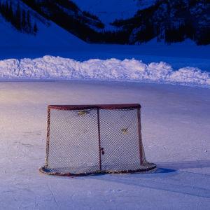 Ett ishockeymål.