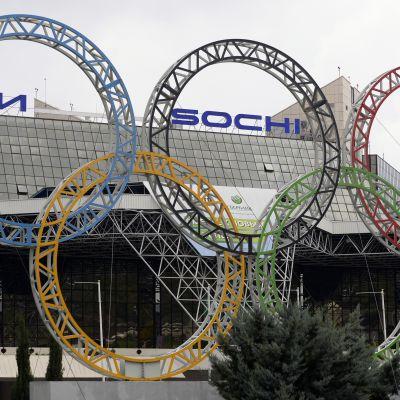 Vinter-OS arrangeras i Sotji 2014