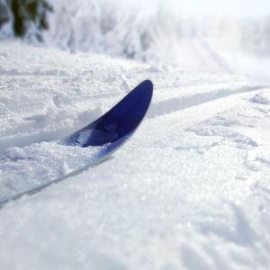 Skidor it ett skidspår