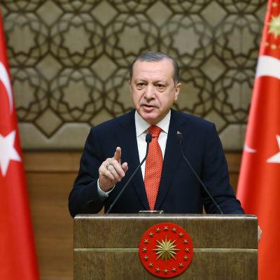 Turkiets president Recep Tayyip Erdoğan har länge krävt större maktbefogenheter och ser nu ut att få dem trots motstånd från oppositionen