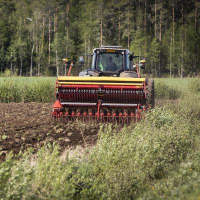 En traktor drar en såmaskin på en åker.
