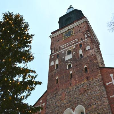 Domkyrkan i Åbo fotad nerifrån. Granen vid domkyrkan med julljus står intill.