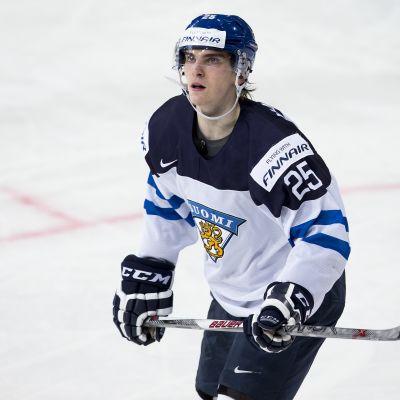 Julius Nättinen 2015.