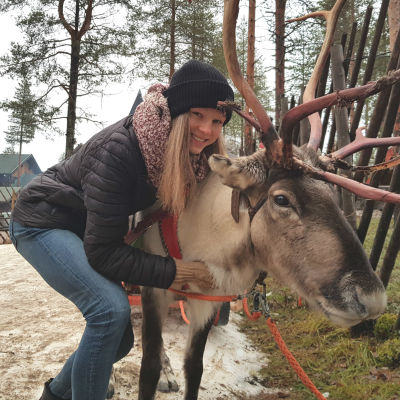 Eveliina Piippo kramar om en ren i Rovaniemi, november 2018.