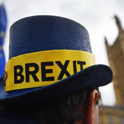 En EU-förespråkare som demonstrerade utanför parlamentet i London 24.10.2017.