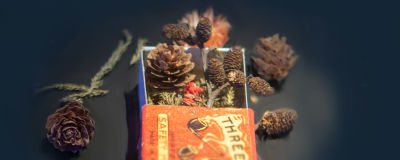Punainen tulitikkulaatikko, jonka sisällä näkyy sammalta, käpyjä ja kukkia