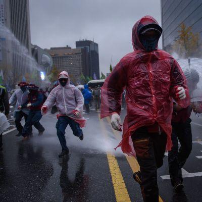 70 000 människor protesterade mot regeringen i Sydkoreas huvudstad Seoul den 14 november 2015.
