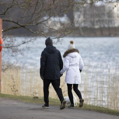 pariskunta ulkoiluttaa koiraa Töölönlahdella