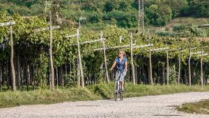 Ella Kanninen pyöräilee italialaisella viinitilalla aurinkoisessa säässä.