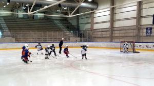 Ishockeyjuniorer i pågående match.