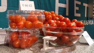 Tomater på Trågdårds Expo