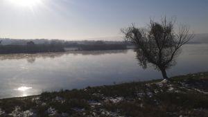 Höstmorgon vid floden Dnestr i Moldavien