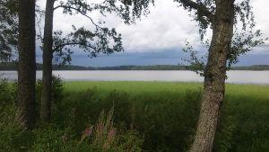 Lojo sjö och stränder inbjuder till naturupplevelser i Porla.