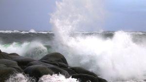 Aallot iskeytyvät rantakallioihin