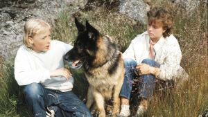 Paavo Westerberg (Tomi), poliisikoira Jami (Roi) ja Mia Ehrnrooth (Ritva).