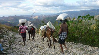 Det är svårt för hjälpen att nå fram till områden som drabbades värst av jordskalvet och stormen Grace.