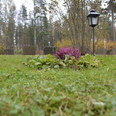 Pekka Nurmikallion kivi puuttuu hautapaikalta.