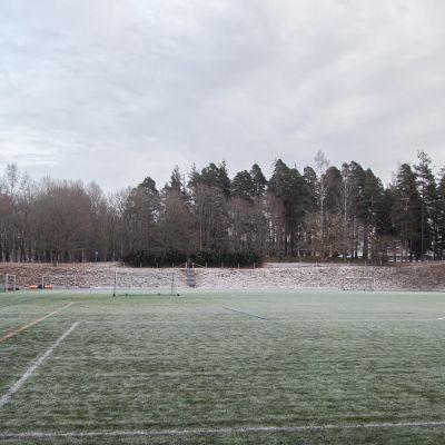Lappeenrannan arboretumin puita ammattikoulun lämmitettävän kentän vieressä.