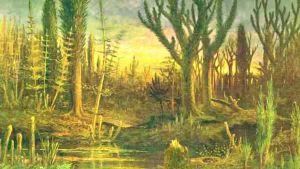 En tidig skog under perioden devon.