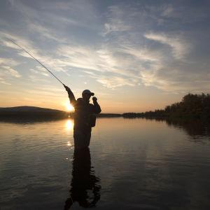 Mies perhokalastamassa auringonlaskussa järvimaisemassa.