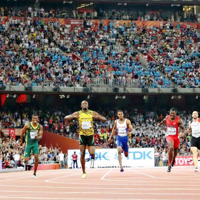 Usain Bolt löper in som etta på 200 meter i VM i Peking 2015.