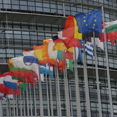 Flaggor utanför EU-parlamentet i Strasbourg