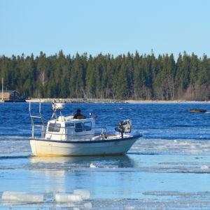 Fiskebåt på väg genom isen mot öppet hav