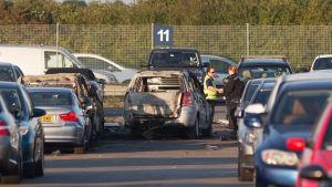 Några av Osama bin Ladens familjemedlemmar dog i en flygolycka nära Blackbushe flygplats.