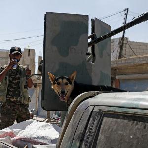 Kurdiska milismän i norra Syrien är på väg att inta staden Manbij som har kontrollerats av IS sedan år 2014