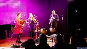 Den estniska folkgruppen Torupilli Jussi Trio på Musikhuset i Helsingfors i november 2018.