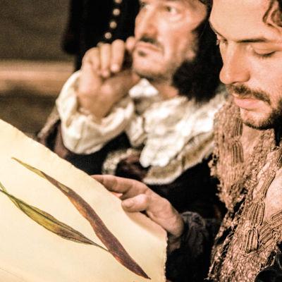 Alankomaiden vuoden 1637 tulppaaneihin kohdistunut keinottelutapaus on esimerkki siitä, mitä voi tapahtua, kun kollektiivinen hulluus ja pohjaton ahneus saavat vallan markkinoilla.