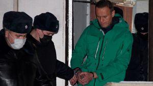 Oppositionspolitikern Aleksej Navalnyj förs ut från en polisstation i Moskva där han förhörts 18.1.2021
