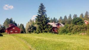 En gammal lantgård med en åker framför.