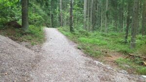 Grusväg byggd i Sibbo storskog