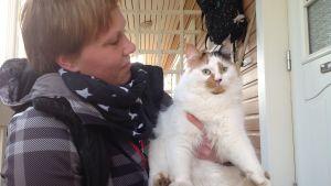 Katten Kiri i Öja i Karleby fick sin första fästing redan i mitten av mars.