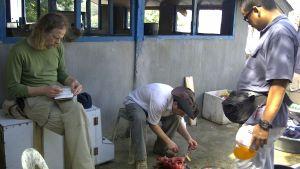 Den nu dödade nederländaren Ewold Horn (till vänster), hans schweiziske kamrat (i mitten) och filippinske guide förberedde en måltid på ön Tawi Tawi den 3 februari 2012, strax innan de kidnappades.
