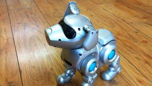 Hundroboten Tekno