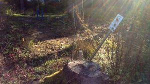 En tomt i skogen, blåa vattenledningar som är dragna till tomten syns, likaså en liten skylt med tomtnumret 13, solsken