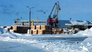 Karleby hamn