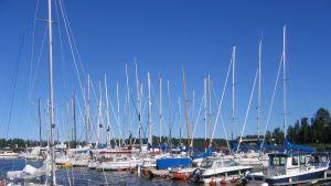 Segelbåtar vid Pavis