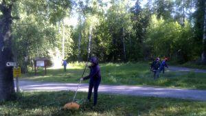 Ulrika Stagnäs-Lund räfsar i hop gräset som andra talkoarbetare trimmat.