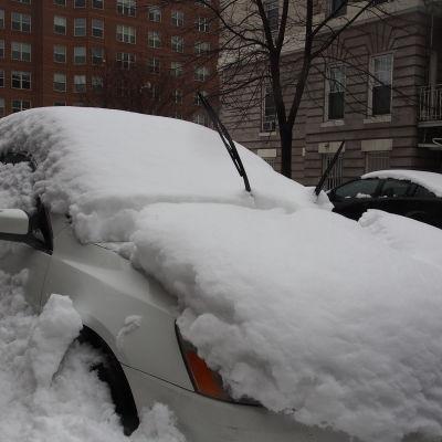 Insnöad bil i Washington DC