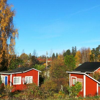Koloniträdgård i Tammerfors