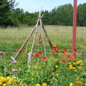 höstörar formade till en kon skapar trädgårdskonst bland blommor och nyttoväxter
