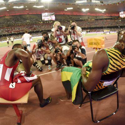 Usain Bolt och Justin Gatlin, VM i Peking 2015.