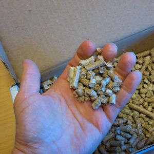 Komposti-pellettejä kädessä.